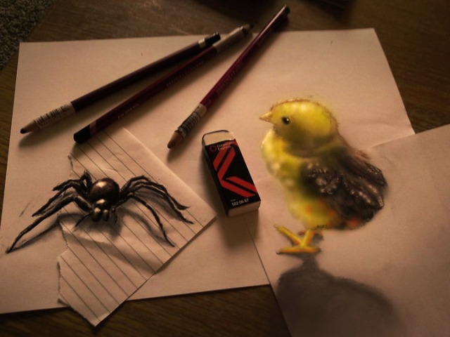 spider_and_the_chick
